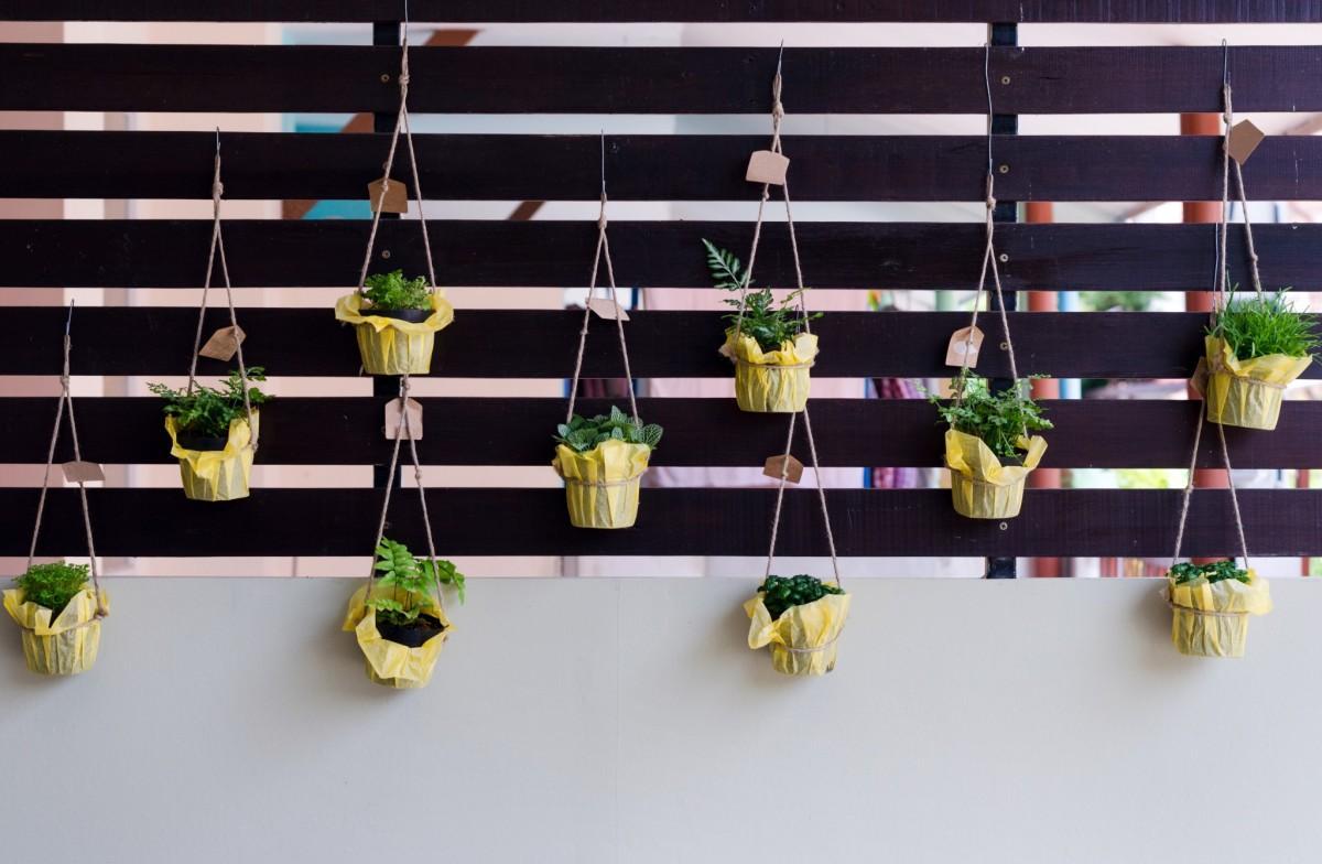 Hangplanten op je uitvaart