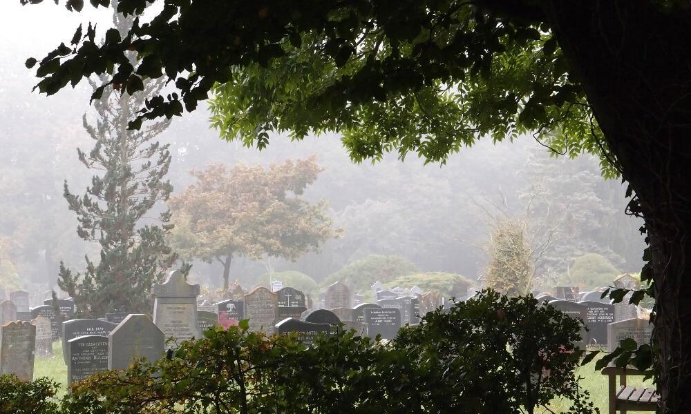 duurzame uitvaart, Week van de Begraafplaats