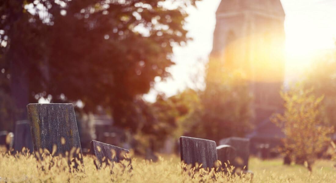 begraven of uitgestrooid, Week van de Begraafplaats