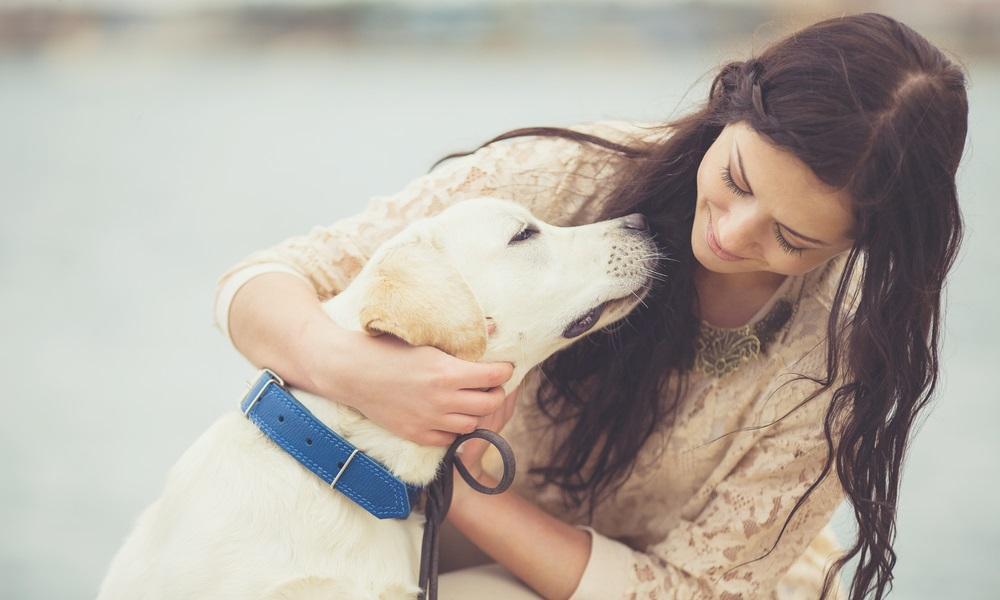 huisdieren bij rouwverwerking